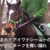 【DMMバヌーシー】ワナダンス2016の競走馬名決定!その名は「アイワナビリーヴ」【バヌーシー生活】