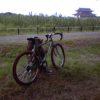 NISHIKI LTという自転車