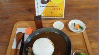 【カレー編】日本一周で食べたローカルグルメ その6【まとめ】