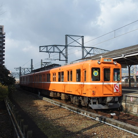 STY35434