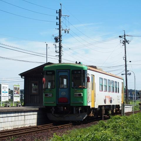 STY36362