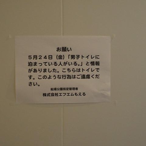 STY05323