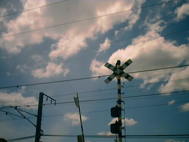 カシオ LV-10の撮影画像